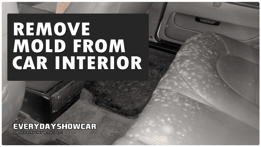 3 Easy Ways To Clean Mold Out Of Your Car Interior
