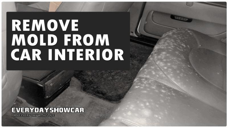 remove mold from car interior